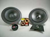 """Dual 8"""" Two Way Speaker Kit  (Builds a Pair of Speakers)"""